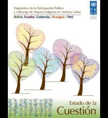 Diagnostico de la participación política y liderazgo de mujeres indígenas en América Latina